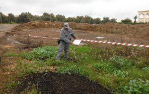 Frantoio scarica su terreni agricoli: aree sequestrate, denunciato proprietario
