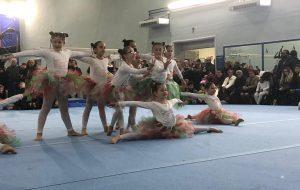 """Gli studenti del Liceo Sportivo """"Fermi-Monticelli"""" a """"Scuola di  ginnastica"""""""