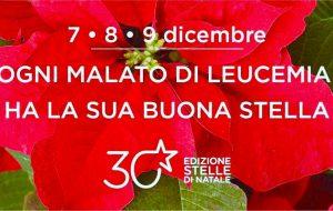 """Tornano le stelle di Natale AIL. Quest'anno la novità sono i """"Quadrotti di Puglia"""""""