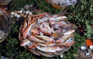 Fasano Fish Festival – Il cibo del mare: grande successo nella serata d'apertura al Laboratorio urbano