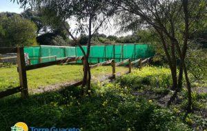 A Torre Guaceto il nuovo centro recupero per la fauna selvatica