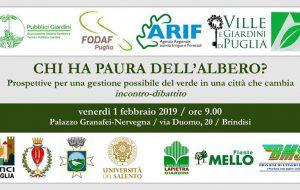 Chi ha paura dell'albero?: venerdì 1 a Brindisi dibattito sulle prospettive di gestione del verde pubblico