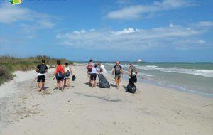 A mano, a mano per Torre Guaceto: al via la pulizia spiagge di comunità