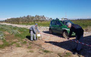 Brindisi, Strada abusiva con rifiuti: sequestro e denuncia dei Carabinieri forestali