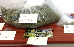 Nasconde nello zaino oltre mezzo chilo di marijuana: arrestato 32enne