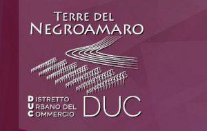 DUC Terre del Negroamaro, valorizzazione dei percorsi culturali e turistici. Giovedì convegni a Cellino e San Donaci