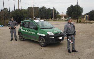Trasporto abusivo di rifiuti: due denunce e camion sequestrato a San Pietro