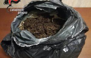 8 kg di marijuana nel sacchetto della spazzatura