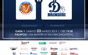 La Dinamo Brindisi verso i playoff: tutto pronto per la gara contro la Virtus Molfetta