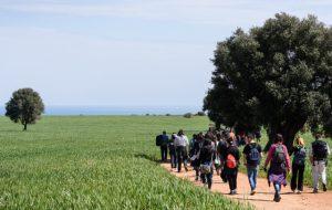 """Gal Alto Salento 2020: Ciclo di incontri sulla """"Cura e tutela del paesaggio rurale e costiero per il sostegno di un turismo lento e consapevole"""""""