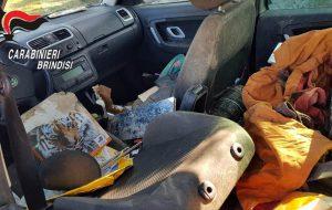 Sei cani abbandonati tra sporcizia ed escrementi in auto chiusa a chiave: denunciata 54enne