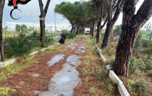 In un terreno di Savelletri i Carabinieri trovano1,3 Kg di esplosivo e 1,1 Kg di hashish