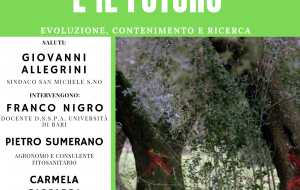 La Xylella e il futuro – evoluzione, contenimento e ricerca: se ne parla giovedì 2 a San Michele Salentino
