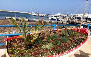 Ostuni Green Riot realizza un'installazione a tema presso il Porto turistico di Villanova