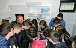 """1° Open day nel """"Centro Fauna Selvatica"""" della Provincia di Brindisi"""