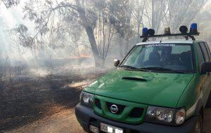 Entro fine mese vanno eseguite le azioni di prevenzione antincendio boschivo. Carabinieri Forestali già al lavoro