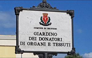 Da oggi Brindisi ha il suo Giardino dei Donatori di Organi e Tessuti, un successo l'intitolazione curata dall'Aido Comunale