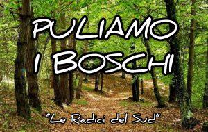 """Michele Conenna e le """"Radici del Sud"""" lanciano """"Puliamo i Boschi"""", l'iniziativa di volontariato per una città più pulita."""