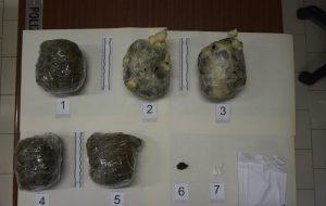 Coca, erba e fumo per oltre 1,2 Kg: tre arresti a Brindisi