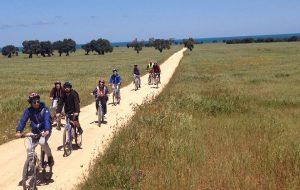 Appia Day Brindisi: 15 Giugno Biciclettata lungo la Via Appia-Traiana