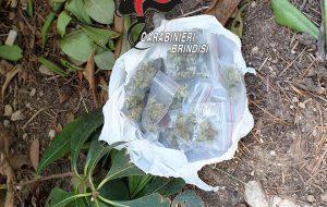 Spacciatori beccati dai Carabinieri a Francavilla e San Michele: vani i tentativi di disfarsi della droga