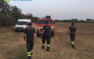 Incendio a Torre Guaceto: fuoco nelle spiagge della zona A