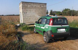 Fabbricato abusivo annesso ad un trullo: due denunce dei Carabinieri Forestali