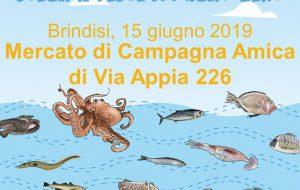 Sabato 15 la giornata nazionale del Pesce Italiano al mercato di Campagna Amica di Via Appia a Brindisi