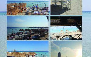 """Dopo il successo del 2018 torna il concorso fotografico """"Summer Polaroid"""""""