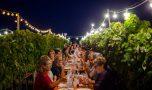 La città, il territorio, il vino: un ritorno al passato rivolto al futuro