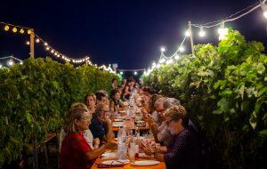 Unione, promozione e identità: obiettivi comuni per i Consorzi vini dop salentini