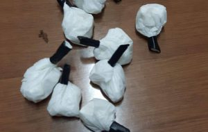 Spaccio di droga: arrestata 31enne di Brindisi