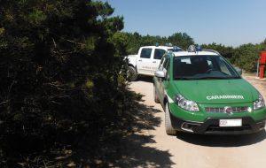 Bivacchi nella notte di San Lorenzo: intervengono i Carabinieri Forestali