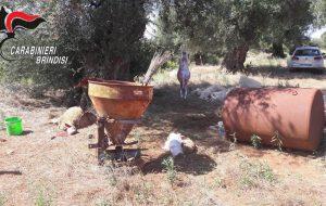 Beccati mentre macellano clandestinamente agnelli e pecore: denunciate 12 persone