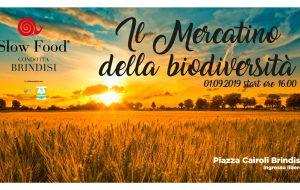 Domenica in Piazza Cairoli arriva il Mercatino della Biodiversità di Slow Food