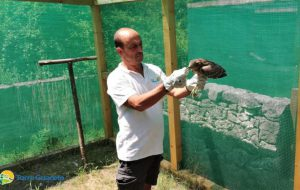 Percorsi di educazione e riabilitazione: continuano le attività del centro fauna selvatica di Torre Guaceto