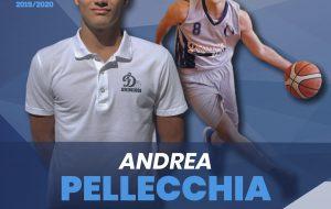 Un talentuoso under per la Dinamo: tesserato il playmaker Andrea Pellecchia