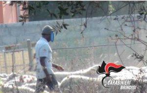 20enne del Gambia ridotto in schiavitù: in manette due imprenditori brindisini