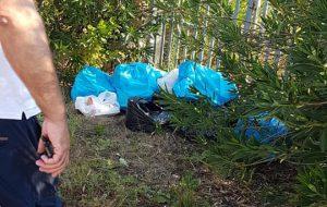 Mesagne: buona la percentuale di raccolta dei rifiuti ingombranti