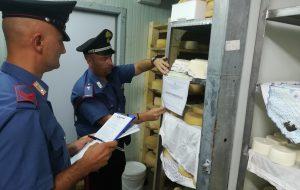Sequestrati 800 kg di formaggi non idonei al consumo umano