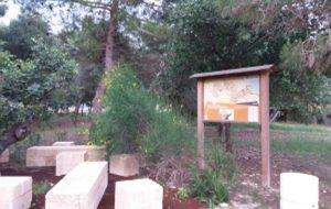 Da Uniti per Mesagne arriva una proposta di rigenerazione del Parco La Tagliata