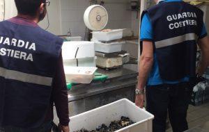 Multate due pescherie di Cisternino: sul bancone prodotto privo di tracciabilità