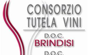 Il rischio di nuovi impianti fotovoltaici preoccupa il consorzio di tutela dei vini DOC Brindisi e Doc Squinzano