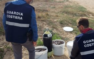 La Guardia Costiera sequestra 100 kg di oloturie sul litorale ostunese