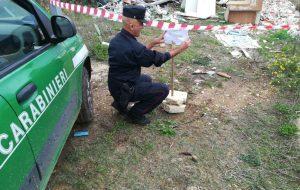 Rifiuto selvaggio alle porte del Cillarese: intervengono i Carabinieri Forestali
