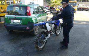 Motocross abusivo nel bosco del Cillarese: sorpresi in 15, uno bloccato dopo lungo inseguimento