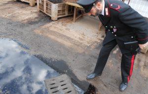 Gestione illecita di rifiuti: denunciato titolare di un frontoio di Ostuni