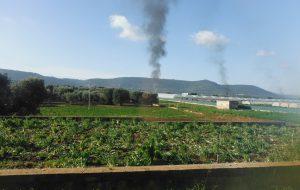 Fasano: rogo di rifiuti plastici nei pressi di una serra: intervengono i Carabinieri Forestali