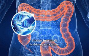 Scopriamo l'importanza del microbioma. Di Rocco Palmisano