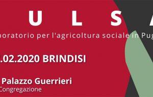 Si presenta il progetto PuLSA, il Laboratorio per l'Agricoltura Sociale in Puglia